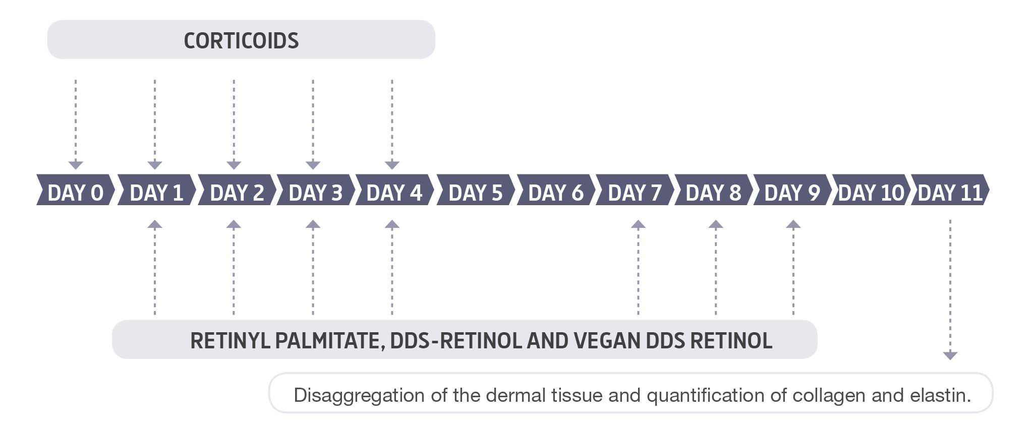 vegan-retinol-study